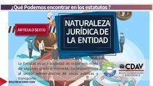Estatuto naturaleza jurídica