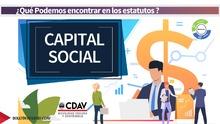Estatuto capital social